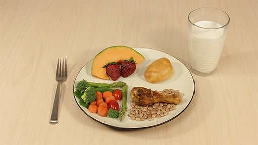 A Healthy Plate | Everyday Learning