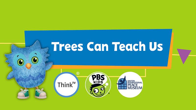 Trees Can Teach Us