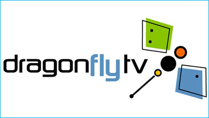 Dragonfly TV   Paint Art