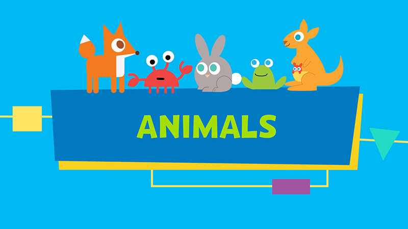 Monday, July 13 - Animals