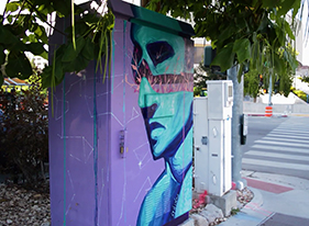Artists in Reno tranform traffic utility boxes into public art.